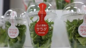2642067_toshiba-salad-package